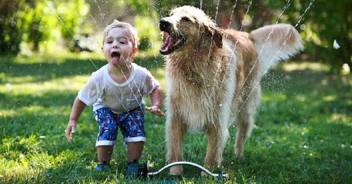 cane e bimbo che giocano con acqua in giardino