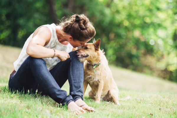 Adottare un meticcio: 15 motivi per cui dovresti farlo