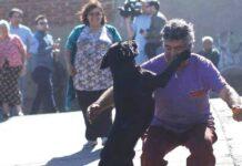 cane-ritrova-miracolosamente-i-suoi-proprietari-dopo-lincendio