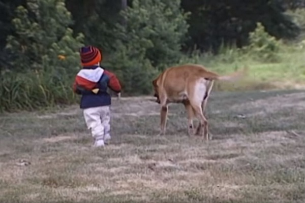 cane e bambino che corrono
