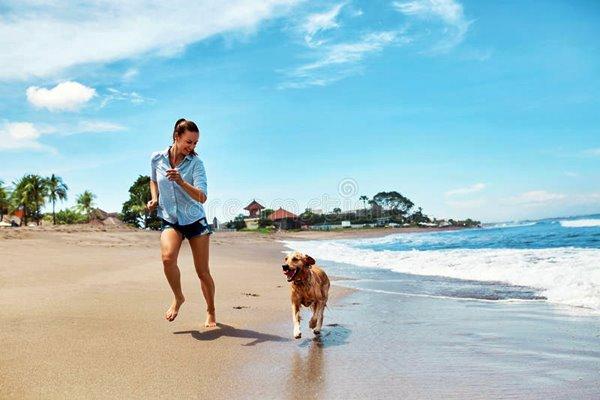 ragazza corre in spiaggia con il cane