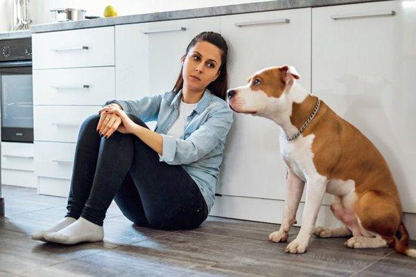 ragazza triste e arrabbiata con il cane