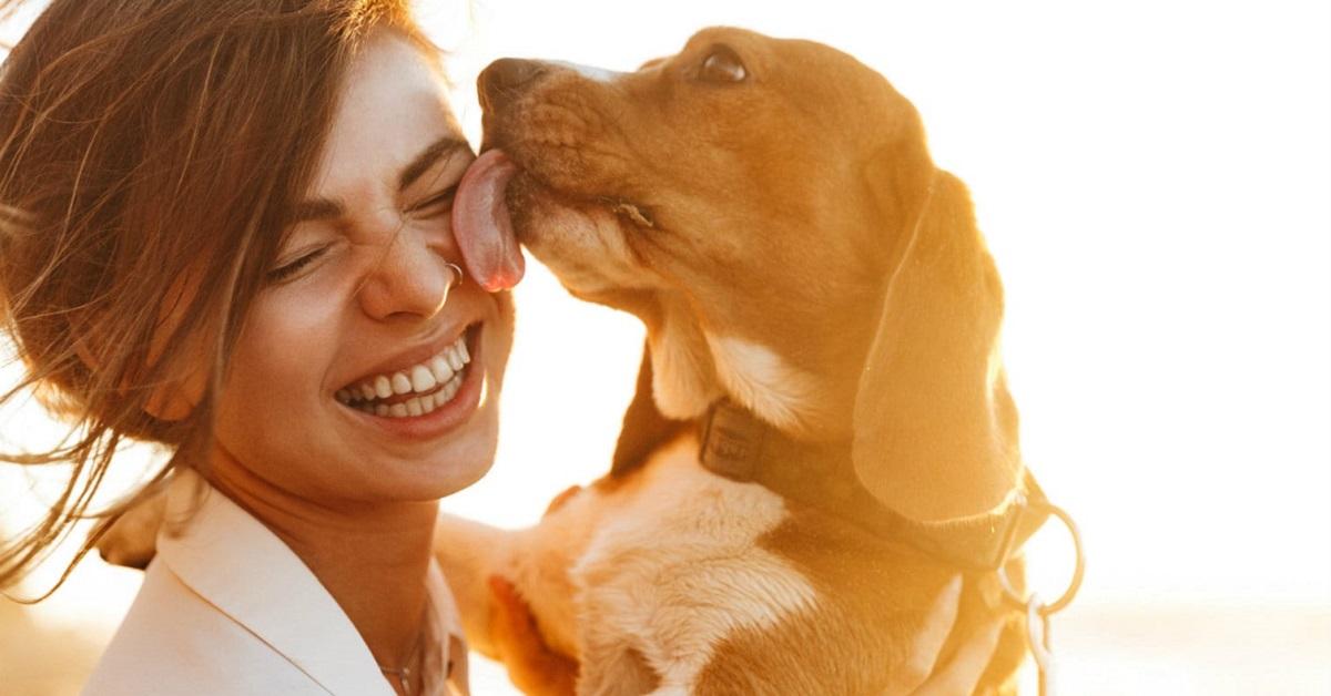 cane dimostra affetto