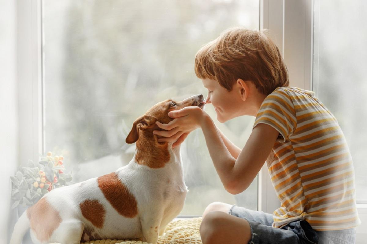 cane che lecca