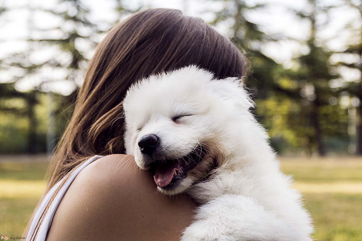 legame con cane