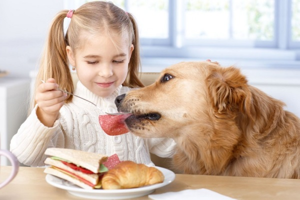 bimba dà da mangiare salame a cane