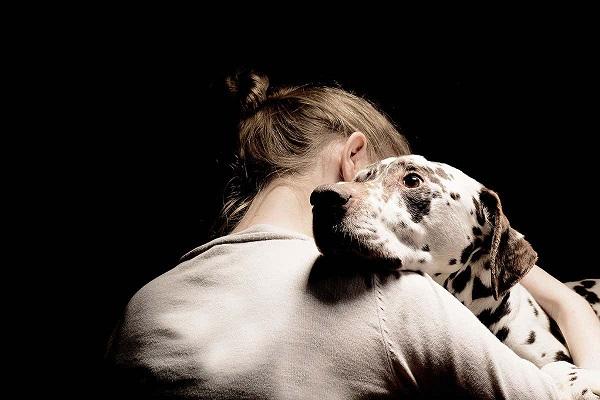 cane dalmata spaventato