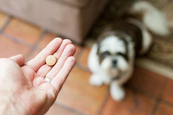 cane guarda mano con pillola