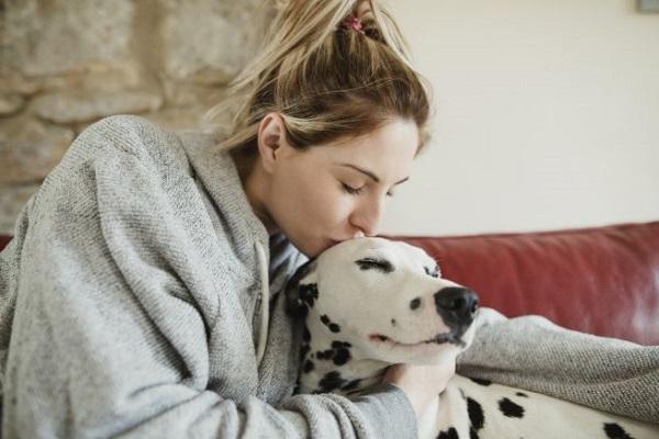 ragazza dà un bacio in fronte al cane