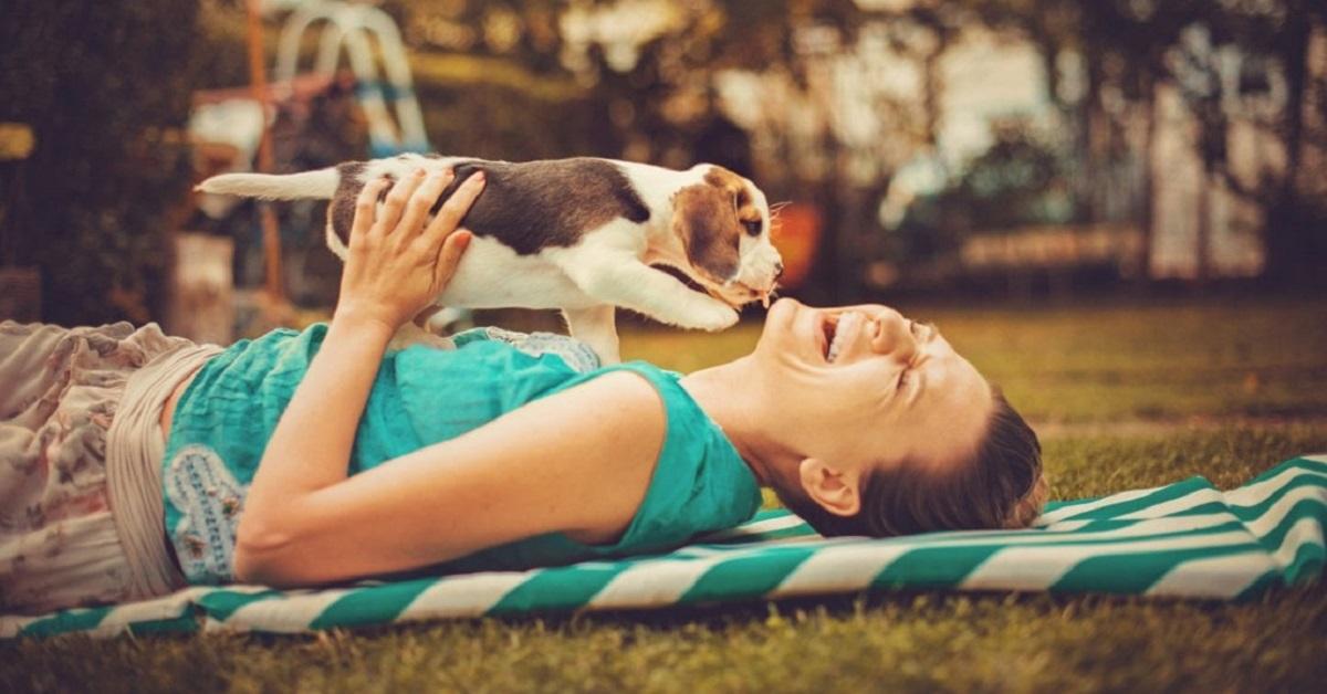 cucciolo di cane lecca donna