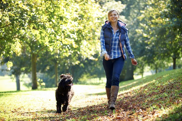 passeggiare al parco con il cane