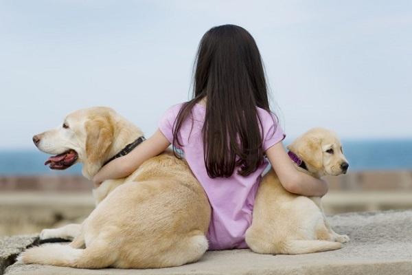 bimba con due cani