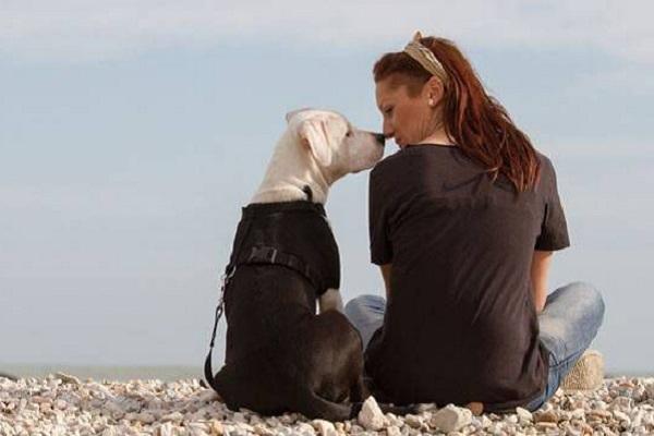 cane al mare con ragazza