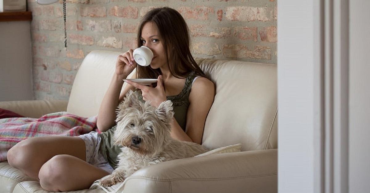 cane sul divano con ragazza