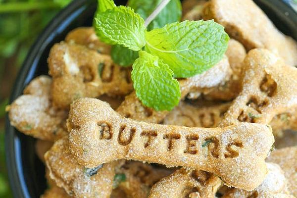 Dessert rinfresca alito per cani: la ricetta