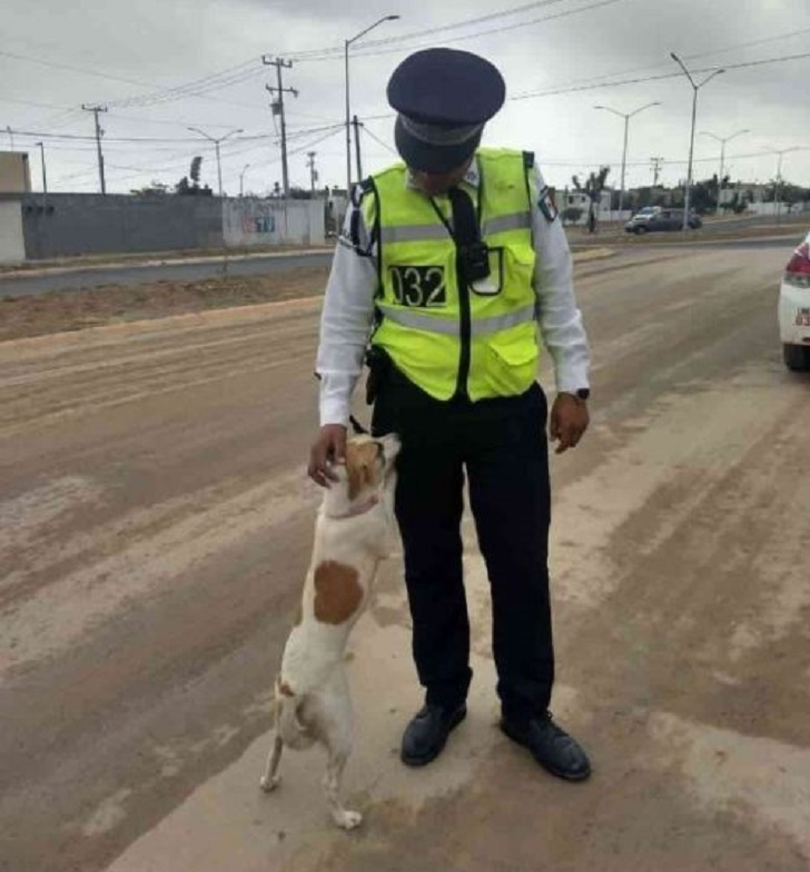 esme-polizia