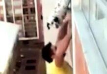 il-cane-sta-per-cadere-dal-13-piano-viene-salvato-da-un-uomo-coraggioso