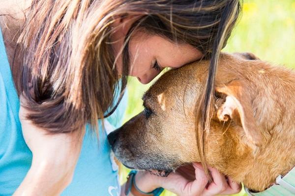 cane e ragazza