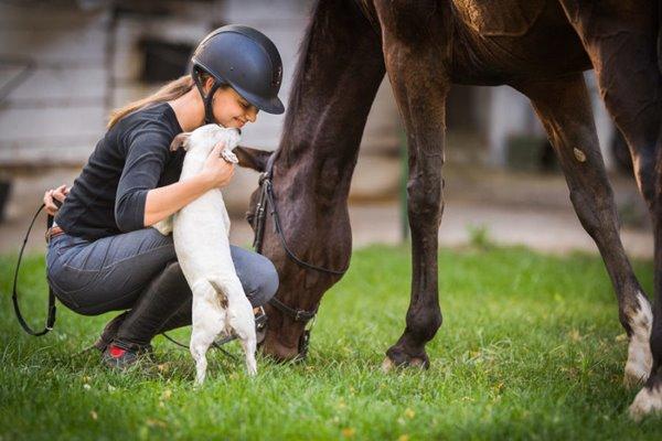 ragazza con cane e cavallo