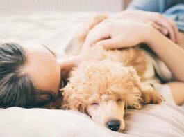 ragazza che dorme con il suo cane