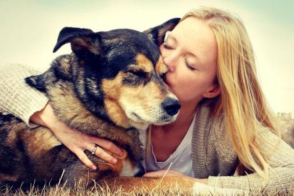 bacio al cane