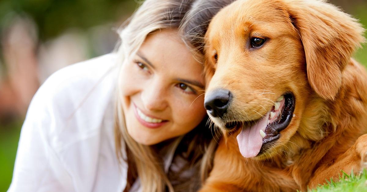 Medicina sensoriale per i cani: che cos'è? E come funziona?