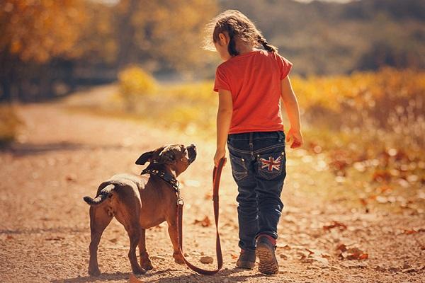 bimba e cane a passeggio