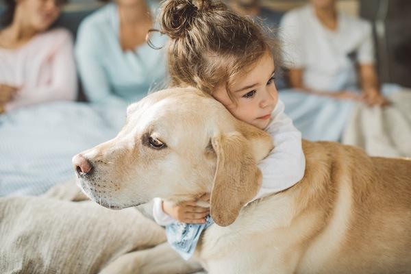 Cosa sapere sul tuo cane di 5 anni: bisogni, cure e necessità