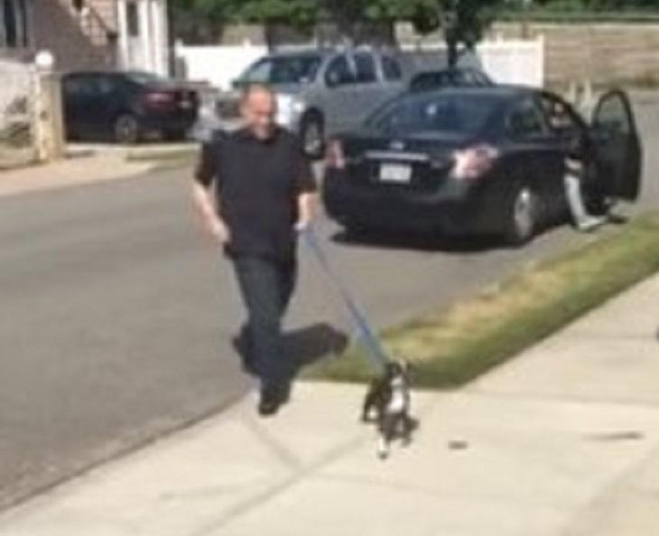 Il cane è scomparso da 3 giorni, il proprietario è disperato