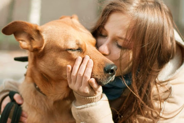 dare un bacio al cane