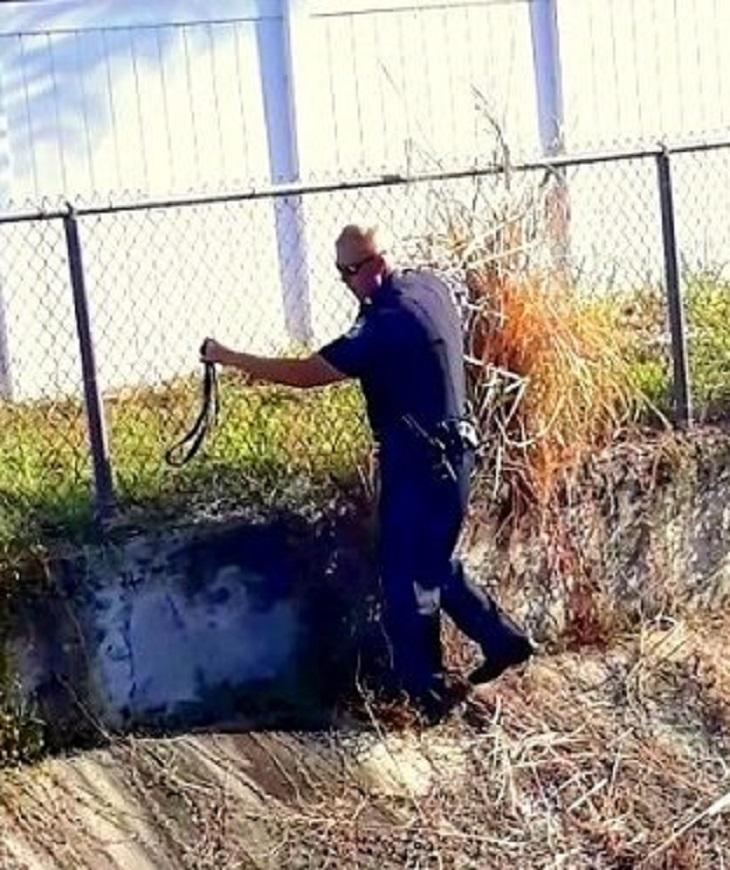 Cane bloccato in un canale di scolo viene salvato da un agente di polizia