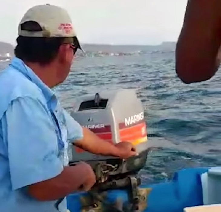 wilson-pescatori