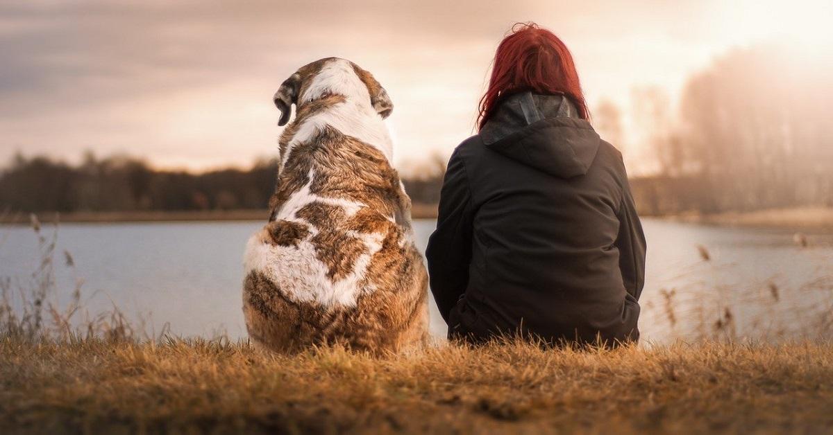 cane donna
