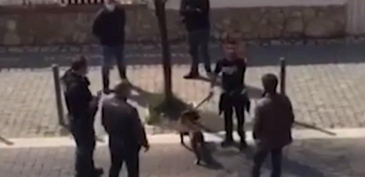 cane-ladispoli-polizia