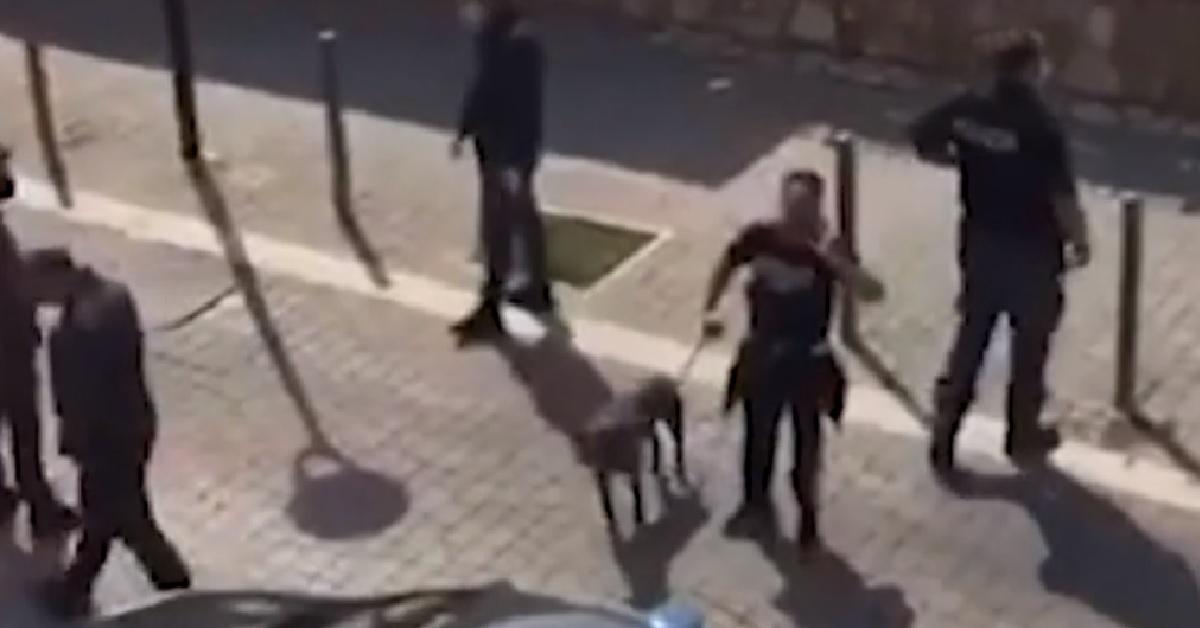 ladispoli-esce-con-cane-e-viene-circondato-dalla-polizia-per-il-coronavirus