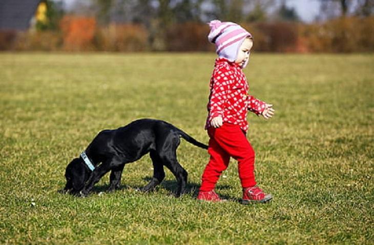 legame-neonato-cane