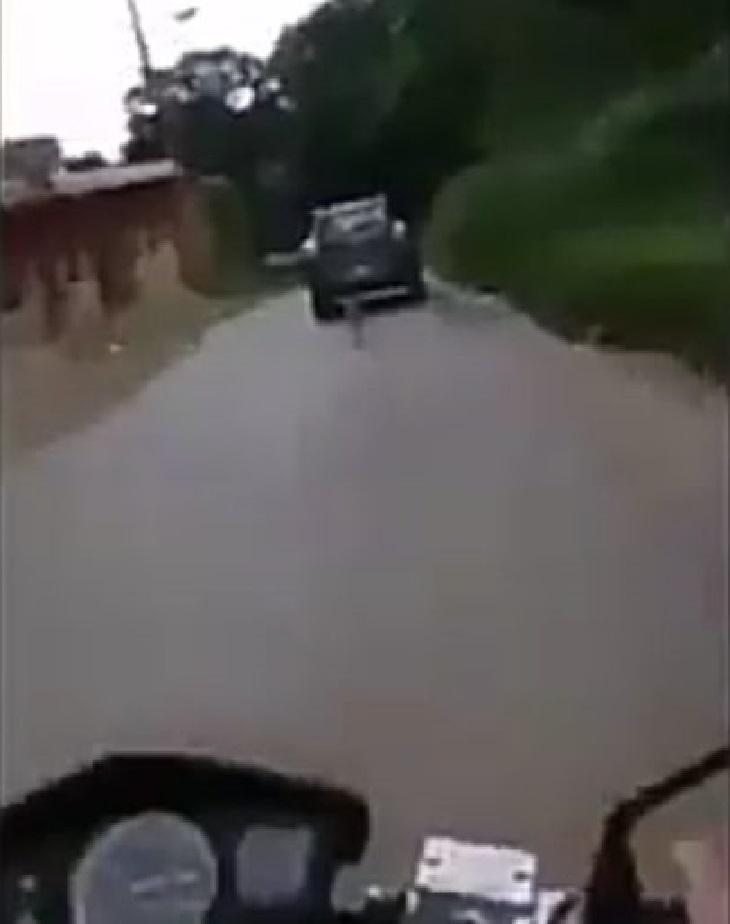 motociclista-cane-auto