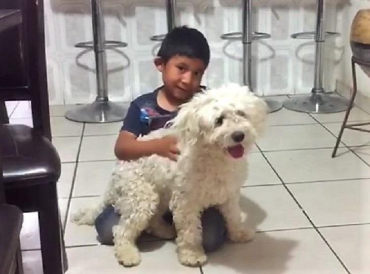 ryder-bambino-felici