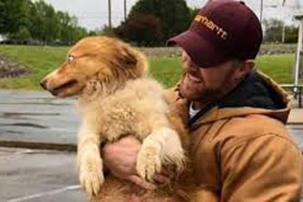 Cane con il proprietario