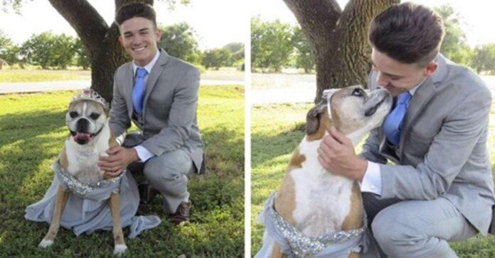 cane con il padrone