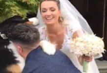 rudy cucciolo nozze video
