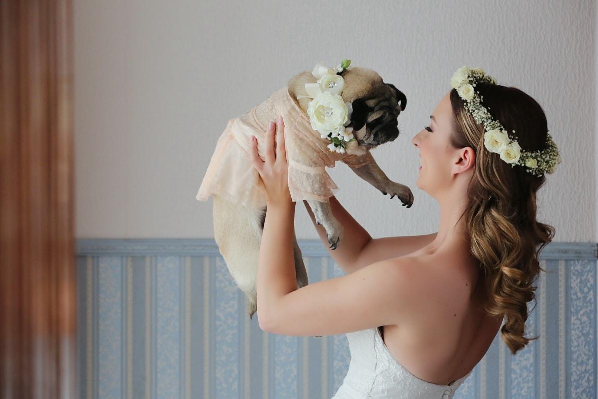 carlino con una sposa