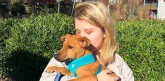 kingston cane salvataggio cucciolo