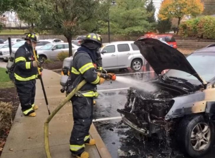 Il salvataggio di 3 cuccioli intrappolati in un'auto in fiamme (VIDEO)