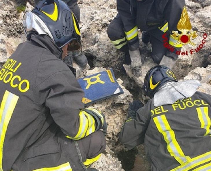 Il salvataggio di un cane Husky incastrato tra gli scogli nel siracusano