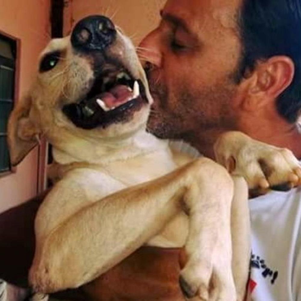 wilson martins amore animali