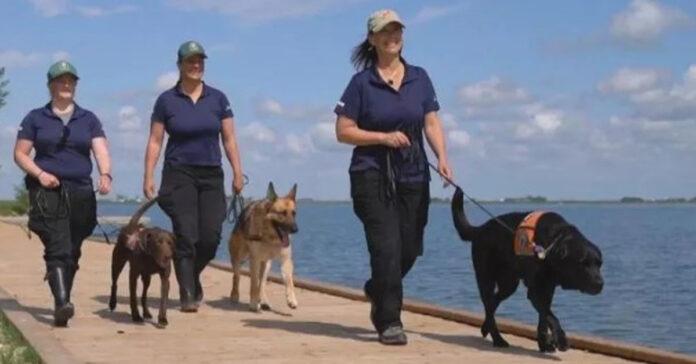 Cani difensori dell'ambiente