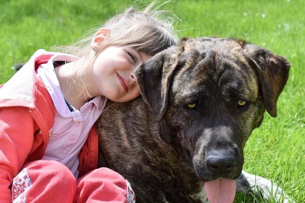 Cane con una bambina
