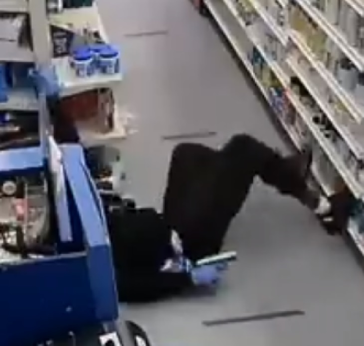 cagnolino eroe mette in fuga ladri