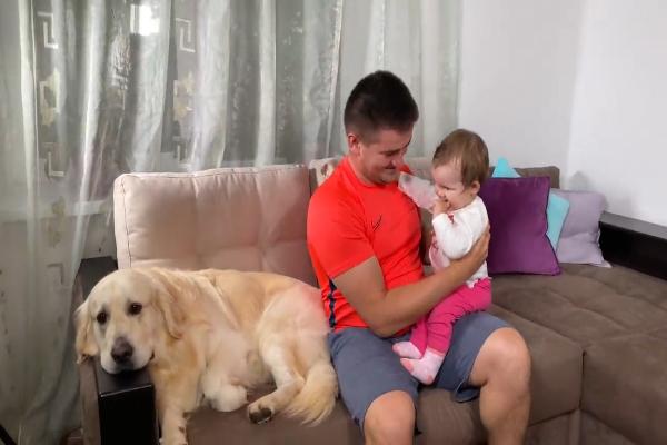 Golden retriever incontra un bambino per la prima volta: la reazione - VIDEO
